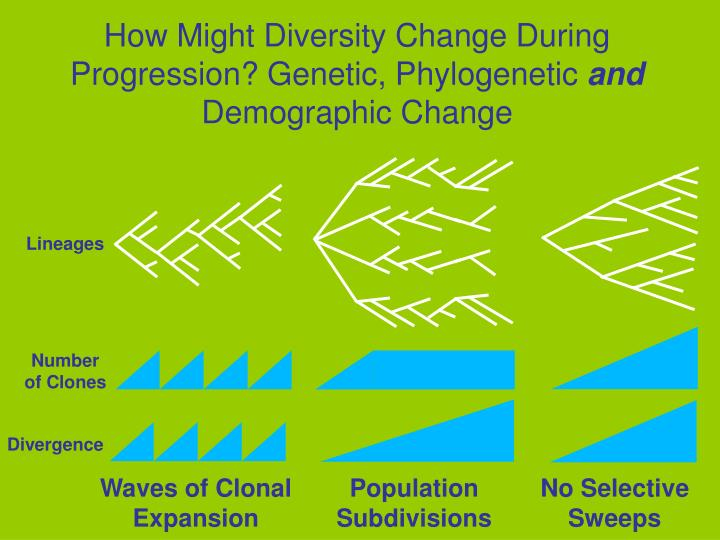 How Might Diversity Change During Progression? Genetic, Phylogenetic