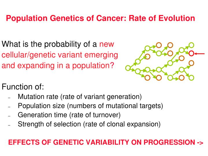 Population Genetics of Cancer: Rate of Evolution