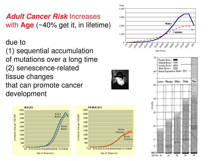 Adult Cancer Risk