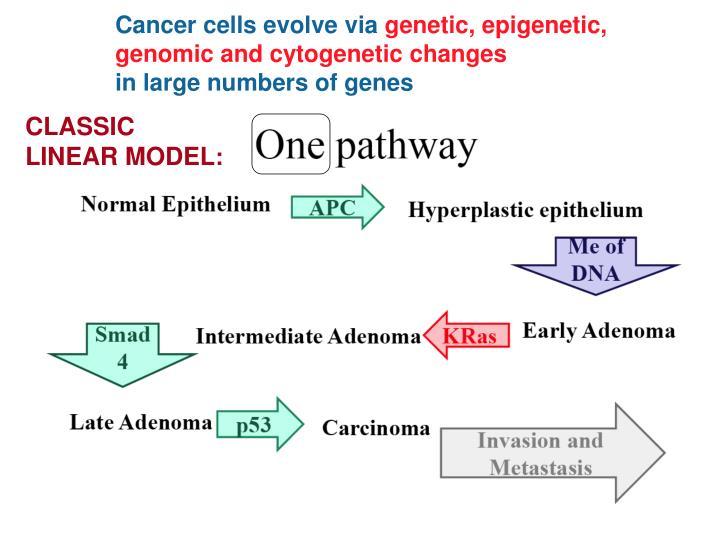 Cancer cells evolve via