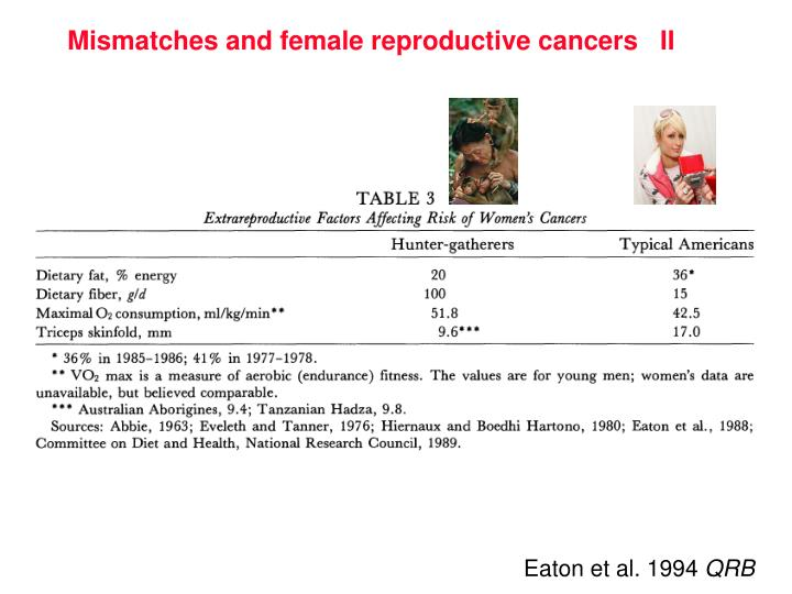 Mismatches and female reproductive cancers   II