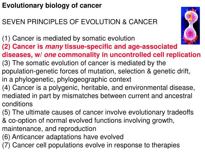 Evolutionary biology of cancer
