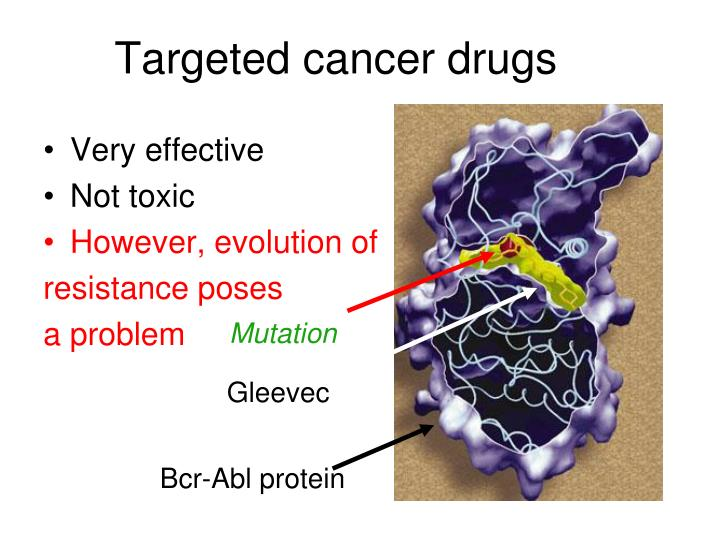 Targeted cancer drugs