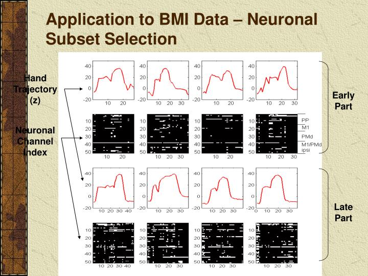 Application to BMI Data – Neuronal Subset Selection