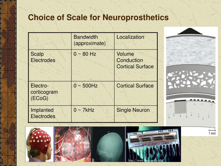Choice of Scale for Neuroprosthetics