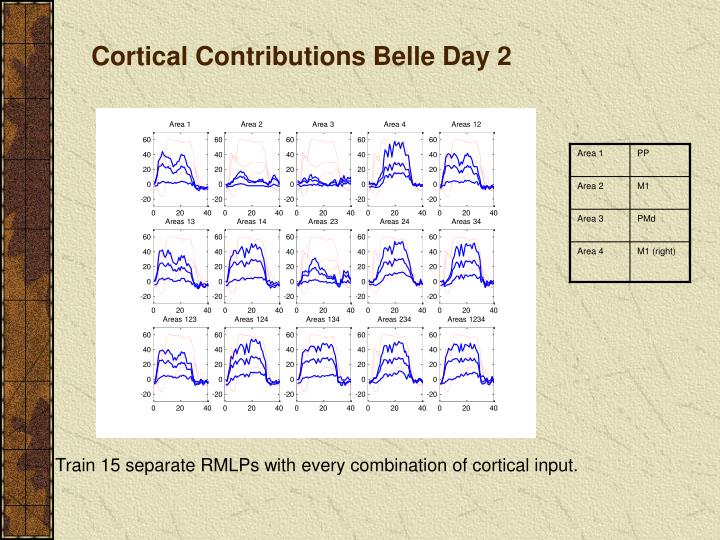 Cortical Contributions Belle Day 2
