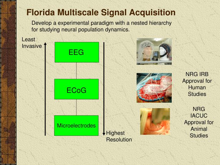 Florida Multiscale Signal Acquisition