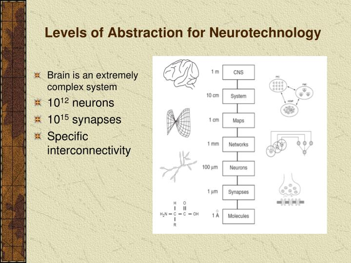 Levels of Abstraction for Neurotechnology