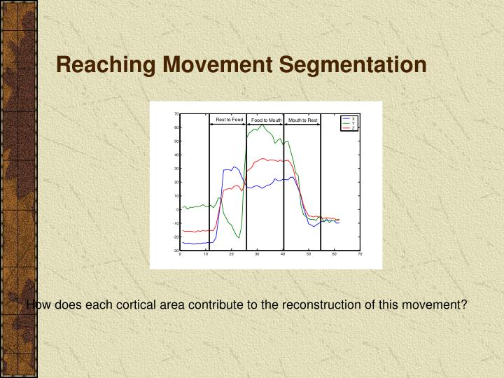 Reaching Movement Segmentation
