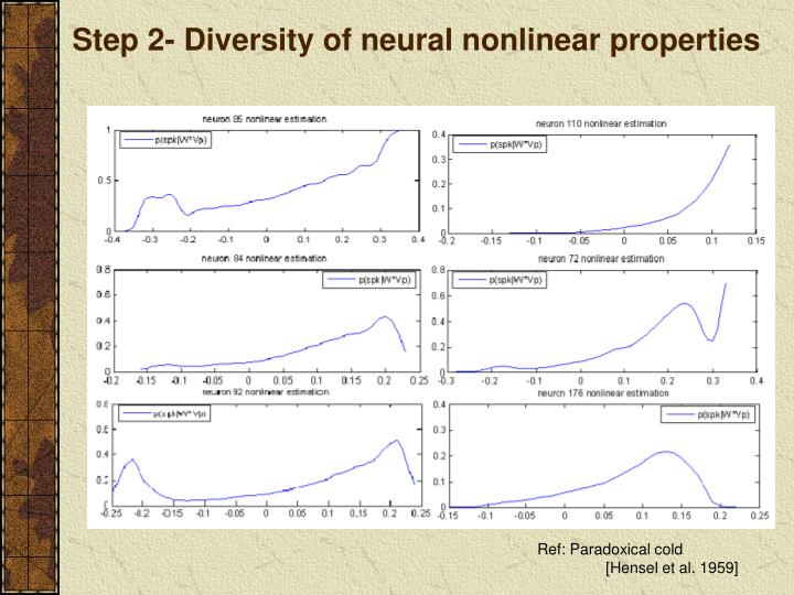 Step 2- Diversity of neural nonlinear properties