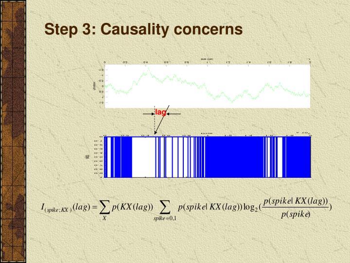 Step 3: Causality concerns