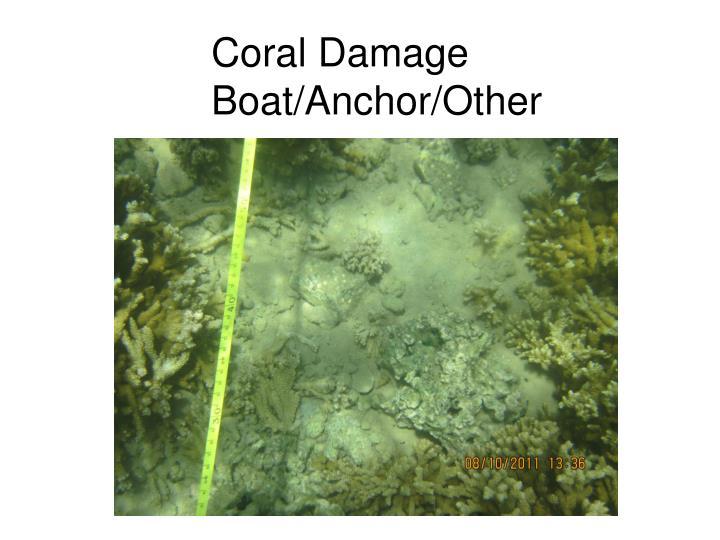 Coral Damage