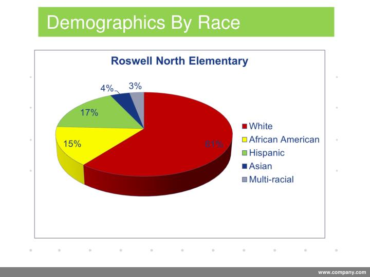 Demographics By Race
