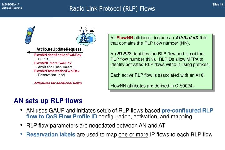Radio Link Protocol (RLP) Flows