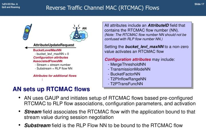 Reverse Traffic Channel MAC (RTCMAC) Flows
