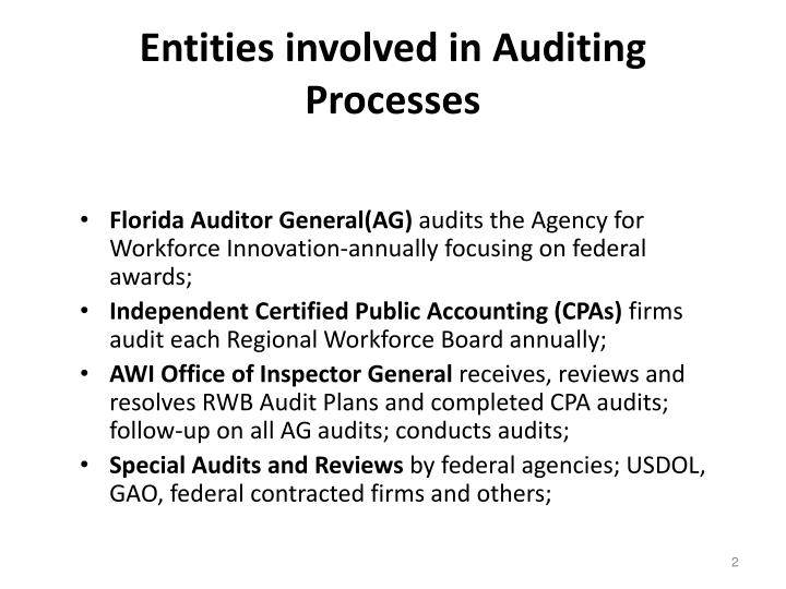Entities involved in auditing processes