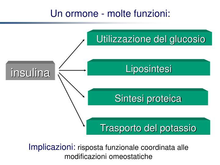 Utilizzazione del glucosio