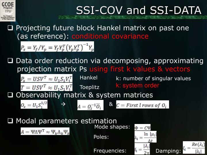 SSI-COV and SSI-DATA