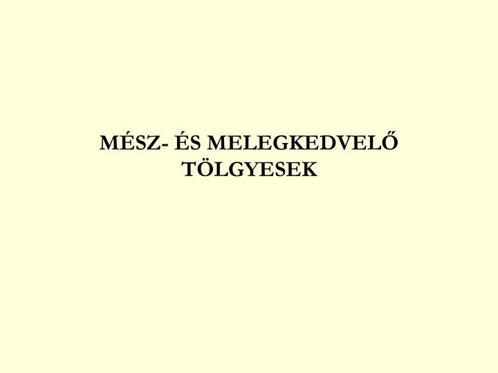 MÉSZ- ÉS MELEGKEDVELŐ TÖLGYESEK