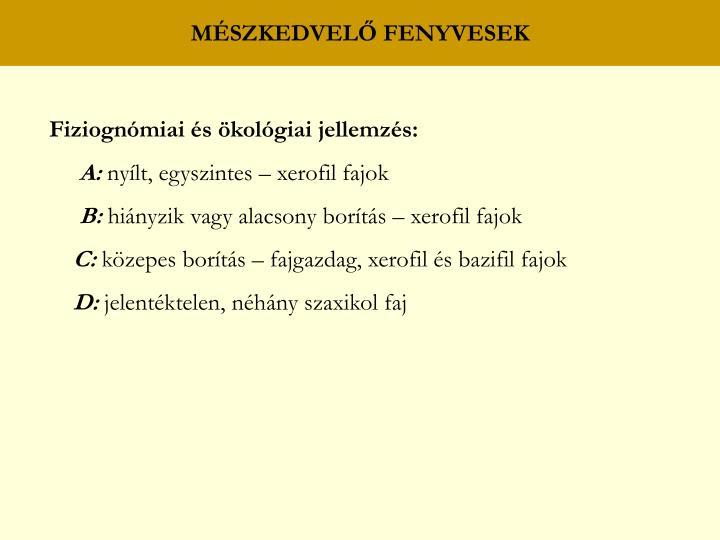 MÉSZKEDVELŐ FENYVESEK