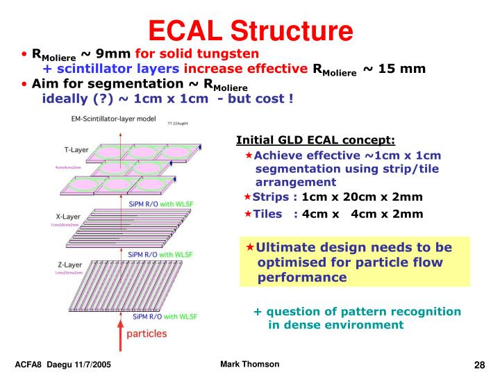 ECAL Structure