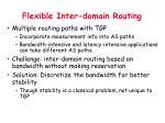 flexible inter domain routing