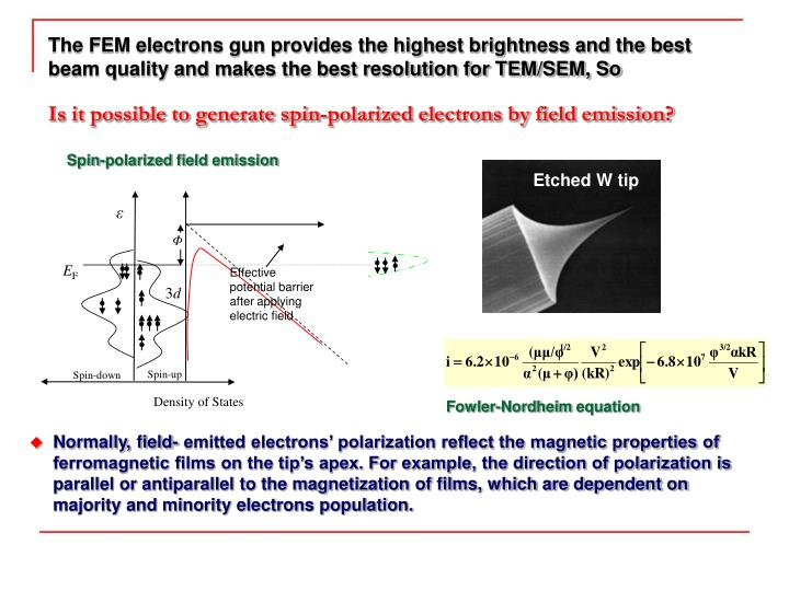 Spin-polarized field emission