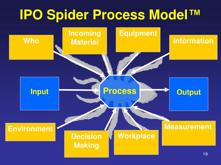 IPO Spider Process Model