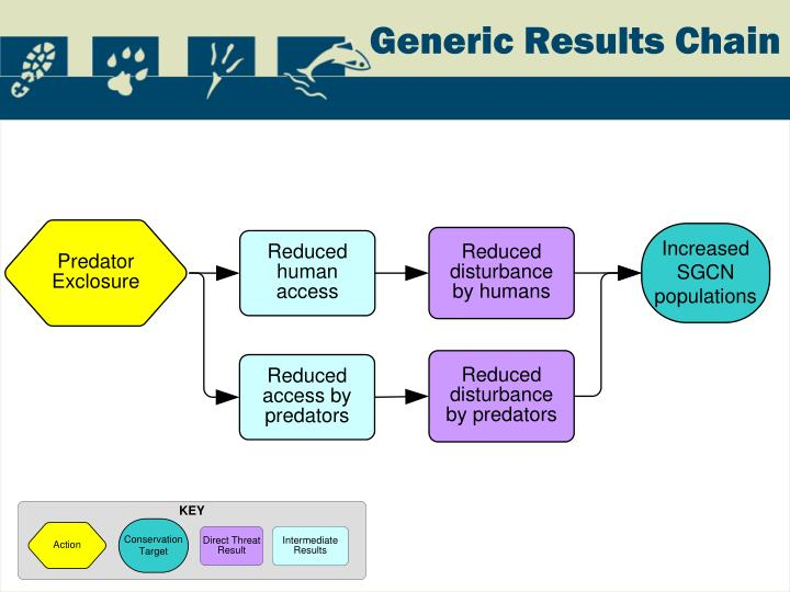 Generic Results Chain