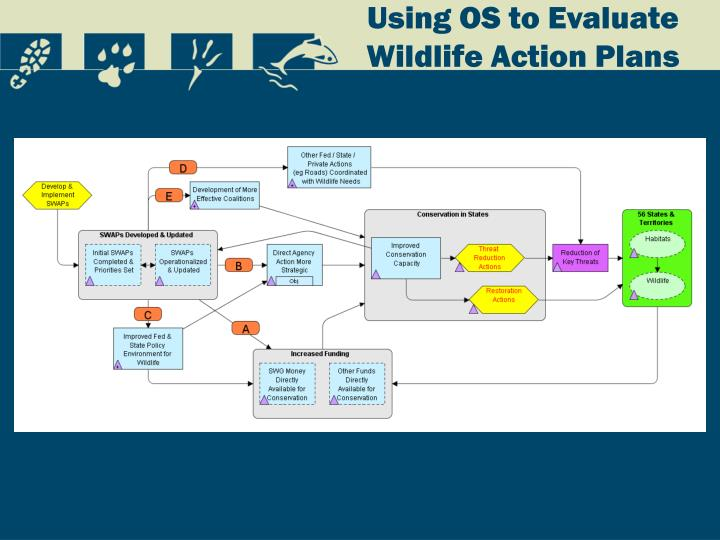 Using OS to Evaluate