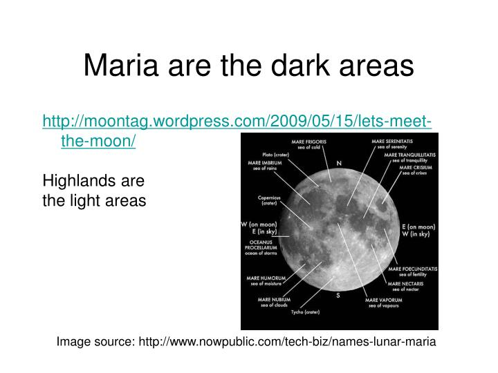 Maria are the dark areas