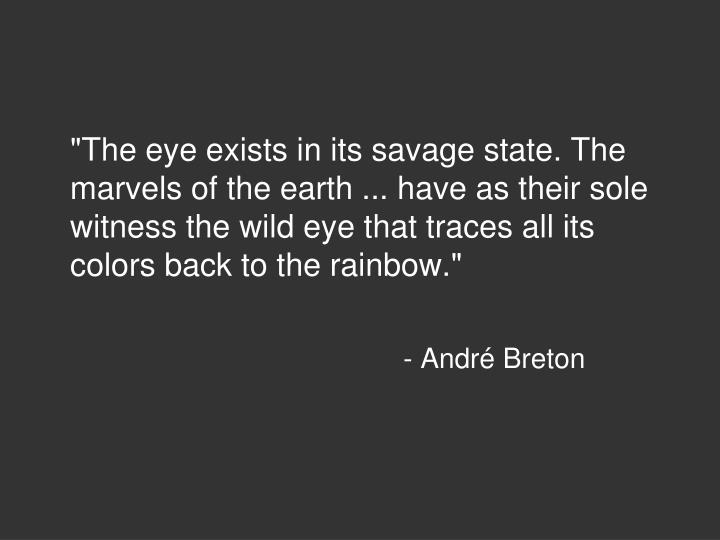 """The eye exists in its savage state. The marvels of the earth ... have as their sole witness the wild eye that traces all its colors back to the rainbow."""
