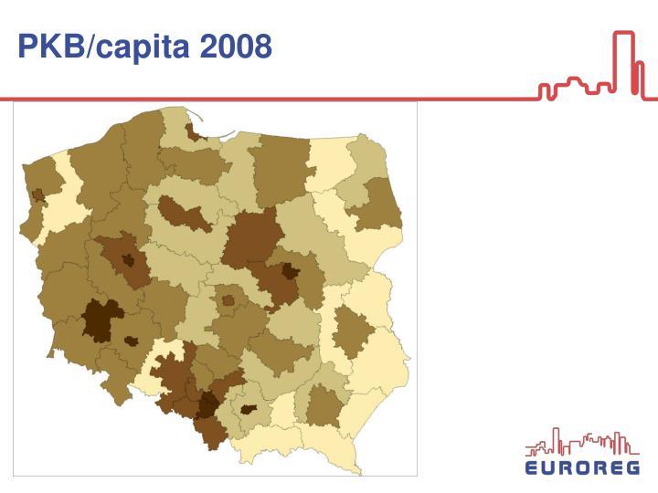 PKB/capita 2008