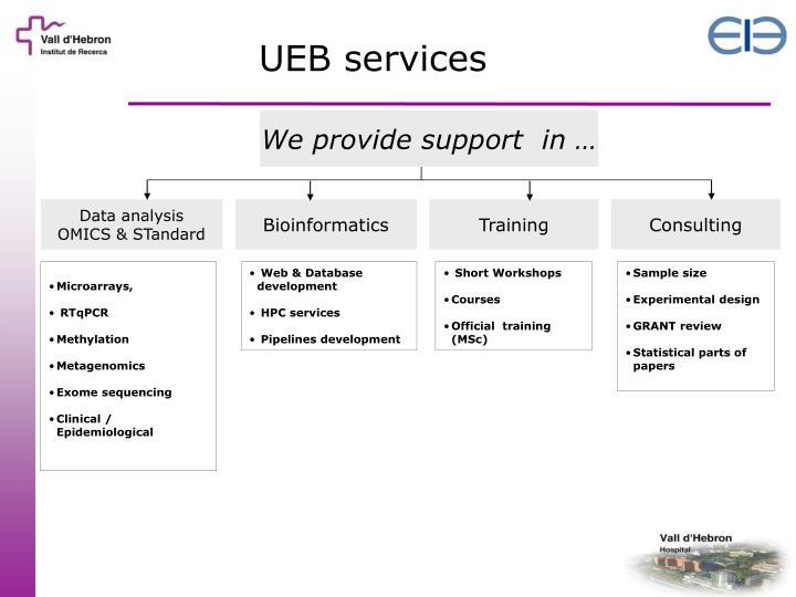 UEB services