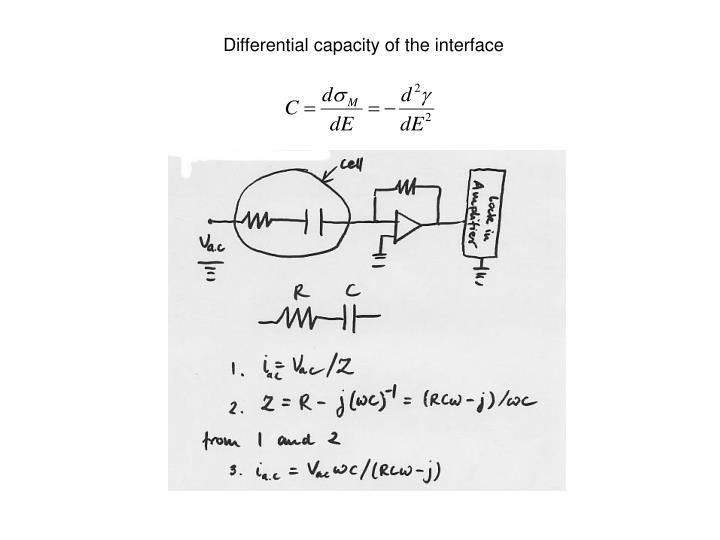 Differential capacity of the interface