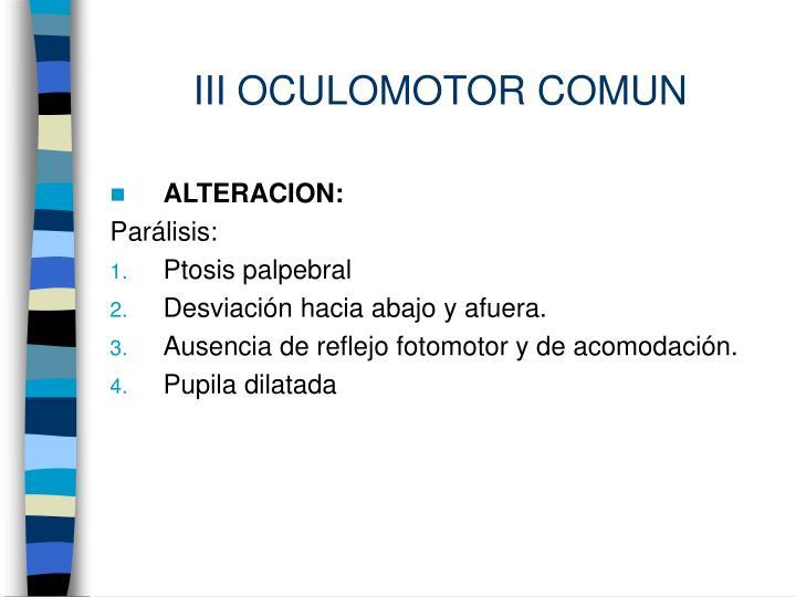 III OCULOMOTOR COMUN