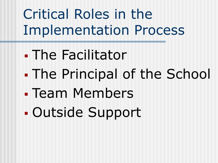 Critical Roles in the Implementation Process