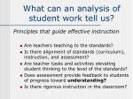 what can an analysis of student work tell us