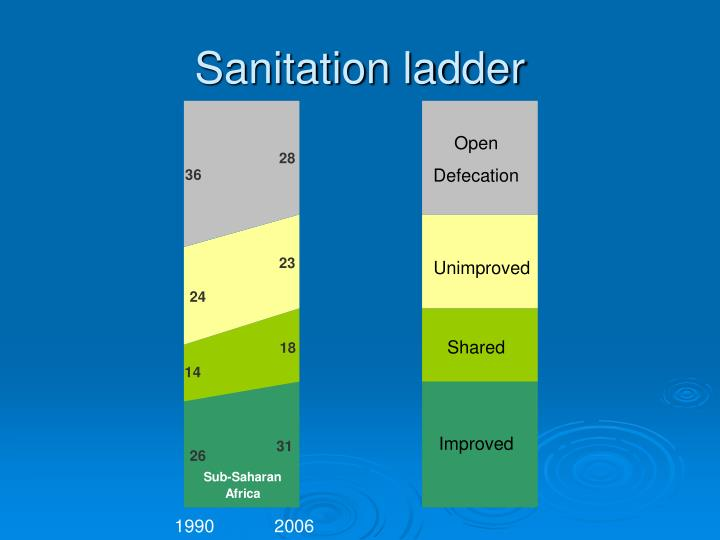 Sanitation ladder