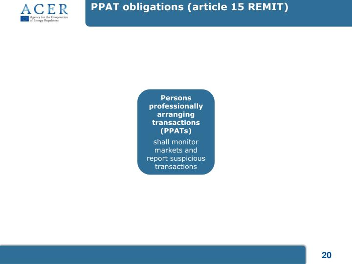 PPAT obligations (article 15 REMIT)