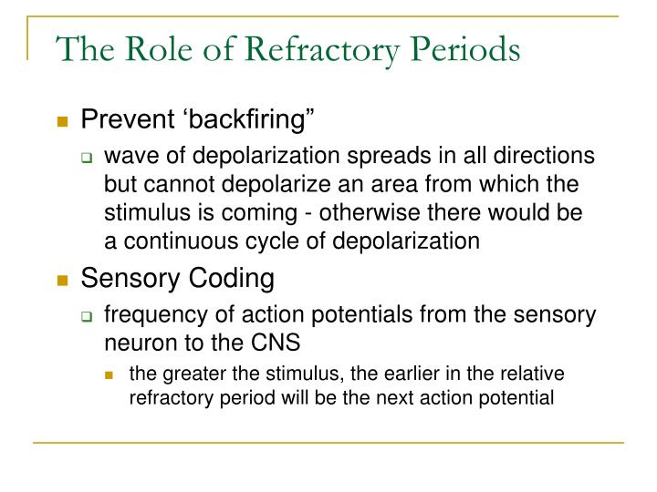 The Role of Refractory Periods