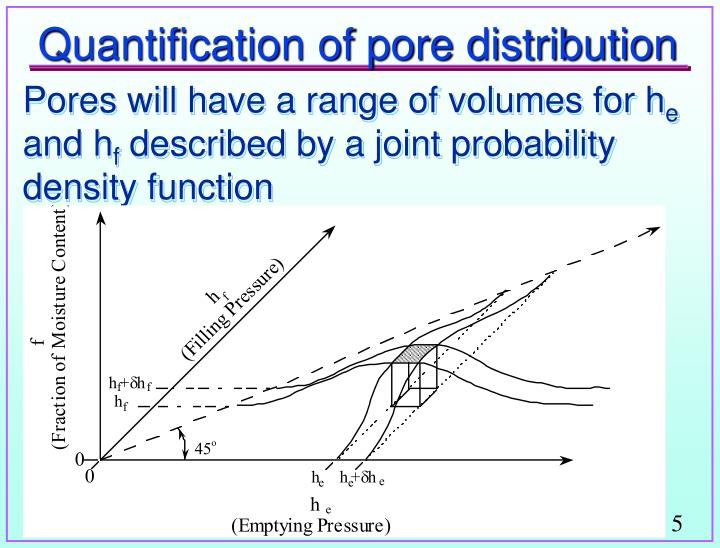 Quantification of pore distribution