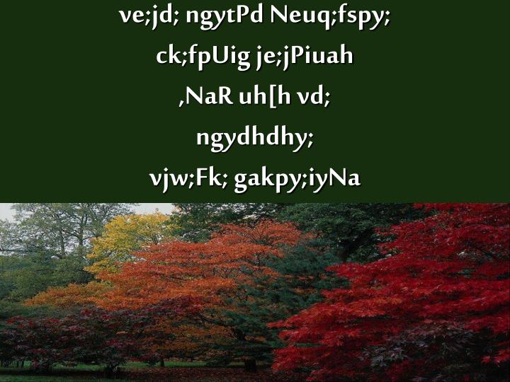 ve;jd; ngytPd Neuq;fspy;