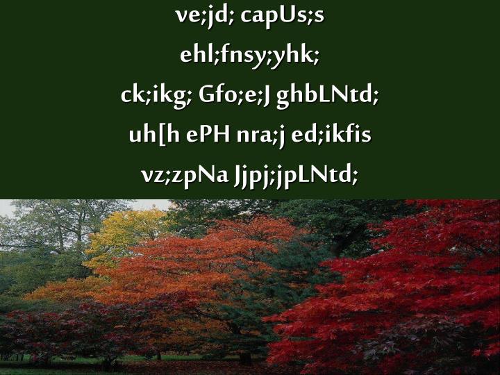 ve;jd; capUs;s