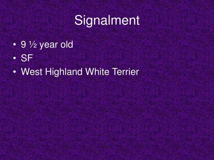Signalment