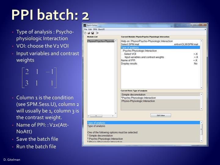 PPI batch: 2