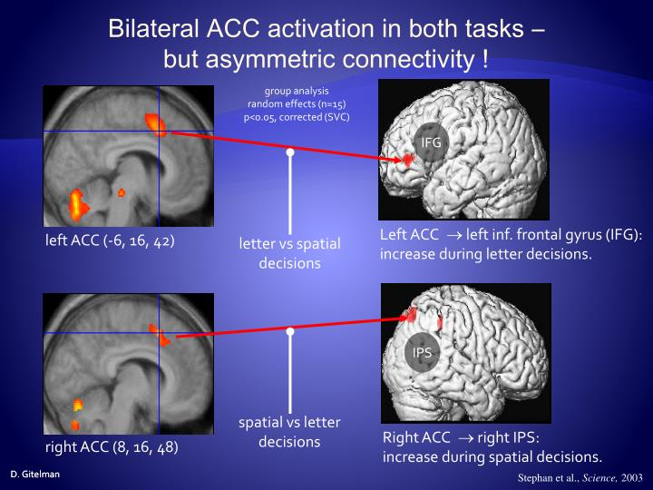 Bilateral ACC activation in both tasks –