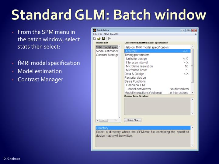 Standard GLM: Batch window