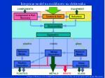 integriran model na reciklirawe na elektronika