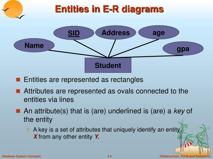 Entities in E-R diagrams